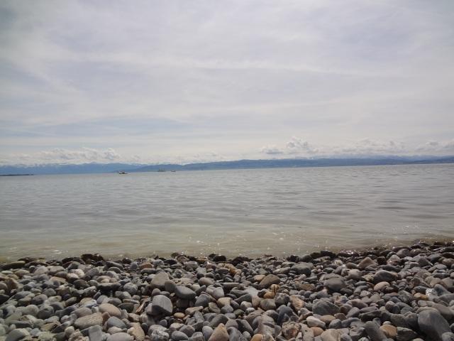 Friedrichshafen Lakeside